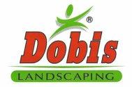 Dobis Landscaping